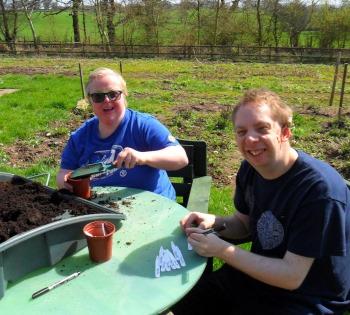 Charity, potting plants